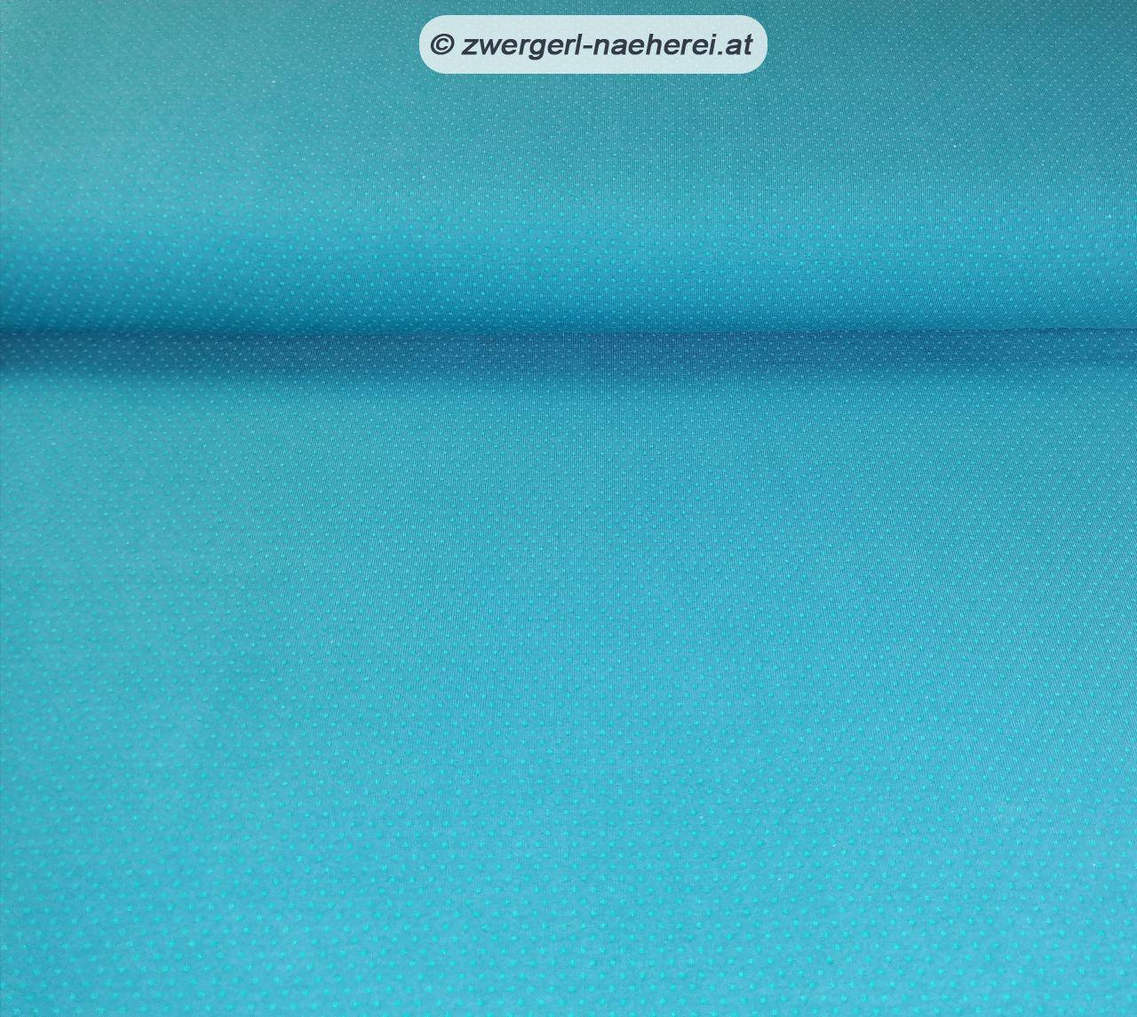 Stoff-Jersey-Oeko-Tex-Punkte-blau_1
